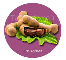 images/dictionary/1504185667Tamarind.jpg